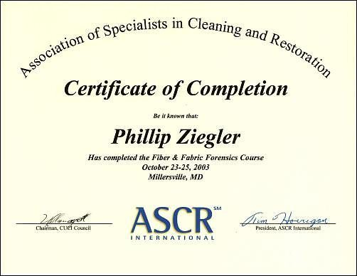 Certified Carpet Cleaning Connecticut Professional